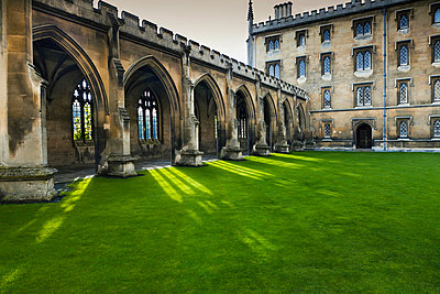 Courtyard with lush green grass; Cambridge, England - p442m999112 by Terence Waeland