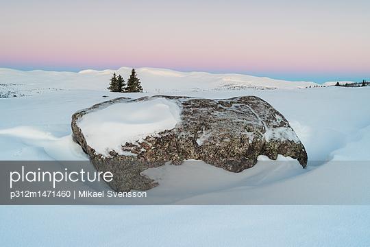 p312m1471460 von Mikael Svensson