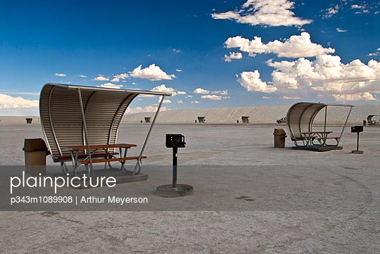 p343m1089908 von Arthur Meyerson