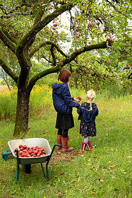 In grandmas garden - p454m2052768 by Lubitz + Dorner
