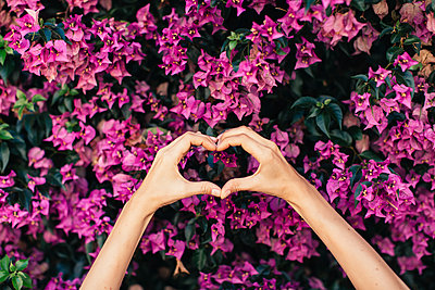 Woman's hands shaping heart in front of pink blossoms - p300m2070421 by Javier Pardina