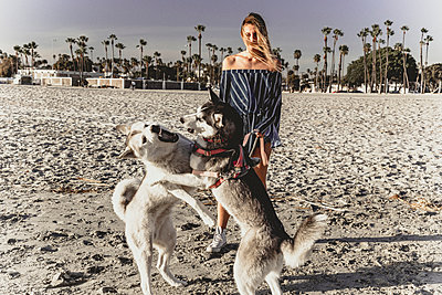 Young woman watching pet dogs playfighting on beach - p924m2039557 by Ashley Corbin-Teich