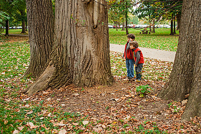 two little boys carefully investigate the trunk of a tree - p1166m2131320 by Cavan Images