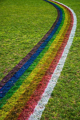High angle view of rainbow pattern on grassy field - p301m1101999f by Tobias Titz