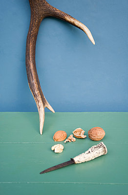 Deer antler, hunting knive, walnut - p300m2070528 by Gianna Schade