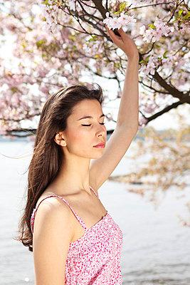 Kirschblüte - p045m813654 von Jasmin Sander