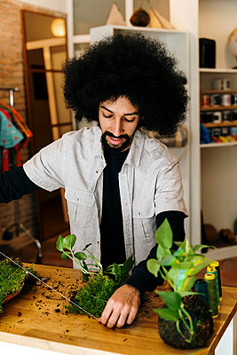 Barcelona, Spain. AfricanAmerican man making a kokedama plant. Kokedama, japanese technique, sustainable, plant, home decor, DIY, technique, - p300m2273493 von VITTA GALLERY