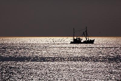 Fischerboot Im Meer - p415m1586114 von Tanja Luther