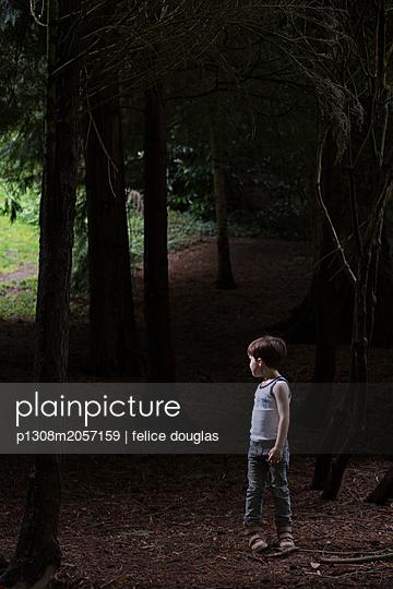 p1308m2057159 by felice douglas