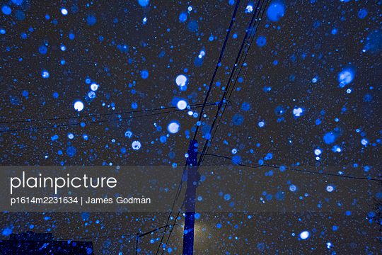 Powerlines at night during snowstorm - p1614m2231634 by James Godman