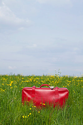 Red suitcase - p4541289 by Lubitz + Dorner