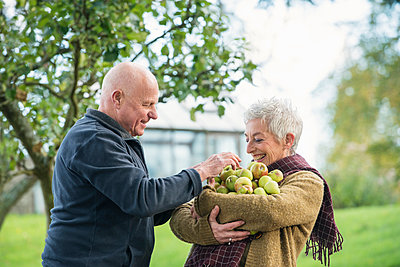 Portrait of happy senior couple with apples - p429m895349f by Colin Hawkins