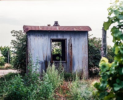 Hut of corrugated iron - p1088m937965 by Martin Benner