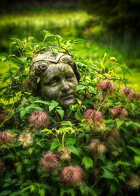 Garden Boy - p1154m1162982 by Tom Hogan