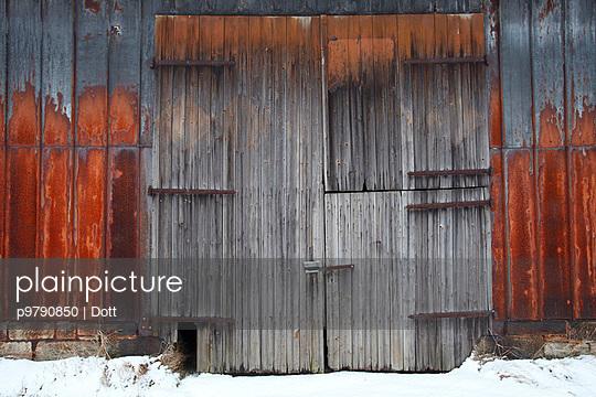 Wood Grain - p9790850 by Dott