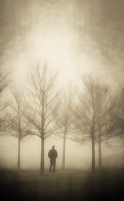 man walking through bare wintery trees - p597m793871 by Tim Robinson
