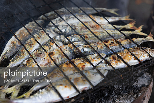 Whole sardines cooking on barbecue grill - p301m2123151 by Tobias Titz