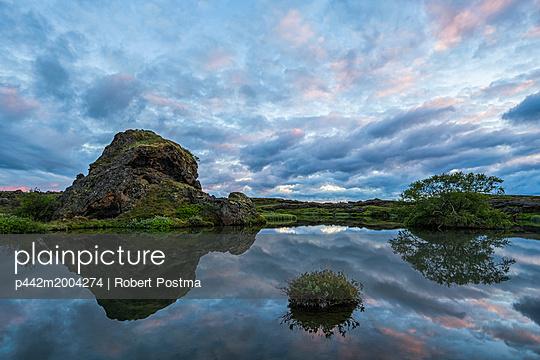 p442m2004274 von Robert Postma