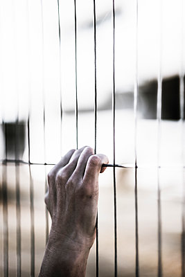Hand on a prison wire fence  - p1228m1497012 by Benjamin Harte