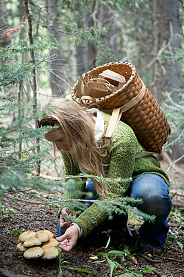 Woman foraging for mushrooms in forest - p555m1409358 by Shestock