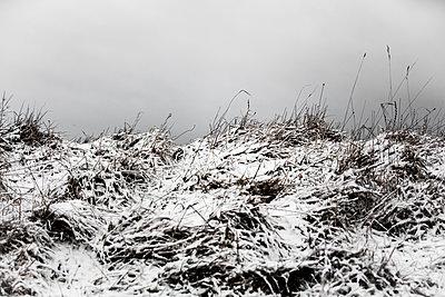 Winter in Cirencester - p1057m1203222 von Stephen Shepherd