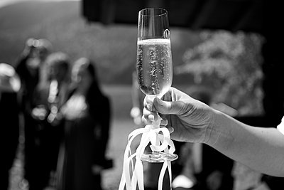 Champagne glass - p1146m1087700 by Stephanie Uhlenbrock
