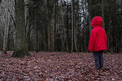 Small boy alone in a forest - p1228m1527677 by Benjamin Harte