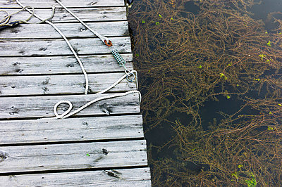 Rope Laying on Wooden Dock Next To Water Plants - p6943747 by Henrik Lagercrantz