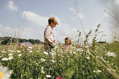 Siblings picking flowers on a meadow - p300m2005538 by Katharina Mikhrin