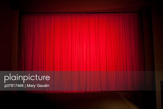 p37817466 von Mary Gaudin