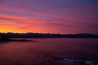A Pink Sunset - p1655m2288464 by lindsay basson