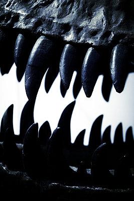Dinosaurierzähne - p415m661162 von Tanja Luther