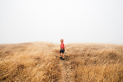 Boy in foggy field landscape, Fairfax, California, USA, North America - p429m1504808 by JFCreatives
