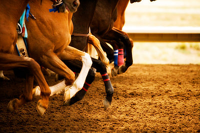 Legs of race horses running side by side on horse racing track during competition - p1427m2292077 by Seth Joel
