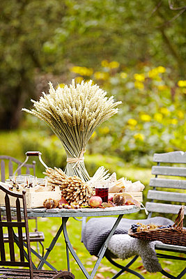 Dried grasses and crates on table in Essex garden - p349m790293 by Brent Darby
