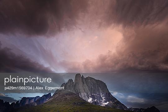 p429m1569704 von Alex Eggermont