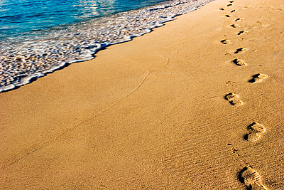 Footprints on beach - p3721621 by Alison Grippo