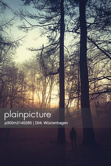 Silhouette of man standing between trees in the evening - p300m2140285 by Dirk Wüstenhagen