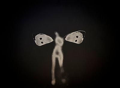 Butterfly figure - p1062m1039745 by Viviana Falcomer