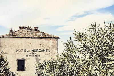 Hotel Morganti in Albo auf der Mittelmeerinsel Korsika - p1162m1496537 von Ralf Wilken