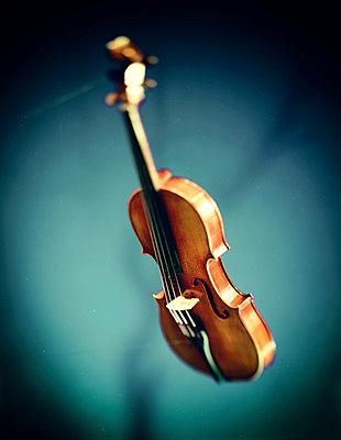 Violine - p1212m1026064 von harry + lidy