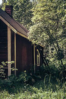 Overgrown garden - p1255m1152840 by Kati Kalkamo