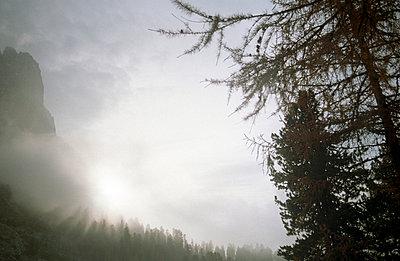 Lichteinstrahlung - p2120104 von Edith M. Balk