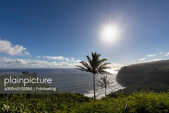 USA, Hawaii, Big Island, Pacific Ocean, Pololu Valley Lookout - p300m2103365 by Fotofeeling