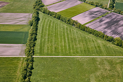 Aerial view, Fields - p913m2125524 by LPF