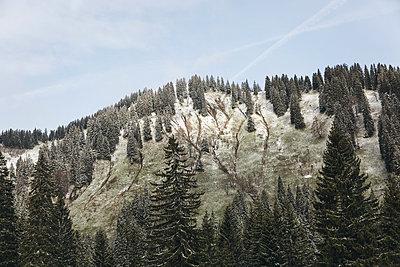 Die Eisheiligen - p1477m1548341 von rainandsalt