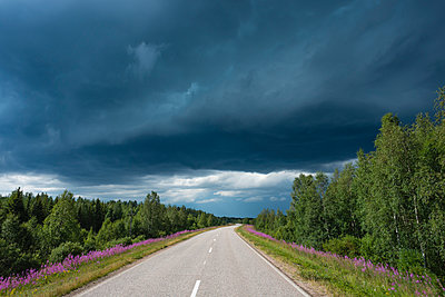 Finland, Lapland, road to Rovaniemi with thunderstorm - p300m998639f by Jan Nadine Boerner