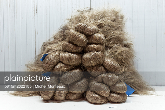 Flachsfasern - p915m2022185 von Michel Monteaux