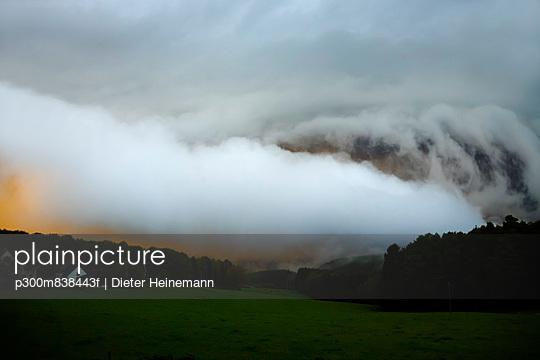 p300m838443f von Dieter Heinemann