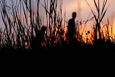 Sonnenuntergang    - p450m2005764 von Hanka Steidle